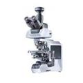 システム生物顕微鏡(Olympus社製)